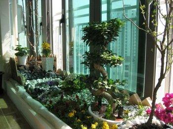 jardin_interieur