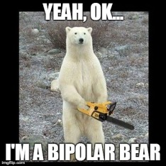 bipolar-bear7